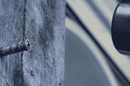 Fourmis Charpentière | Traitement du bois | Neature